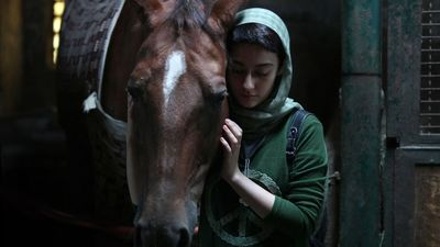"""Dressage"" receives two nominations at Shanghai filmfest"