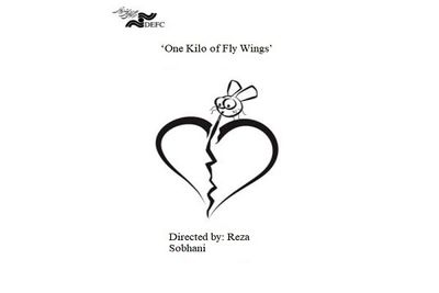 'One Kilo of Fly Wings' to be screened at Dhaka Intl. Filmfest.