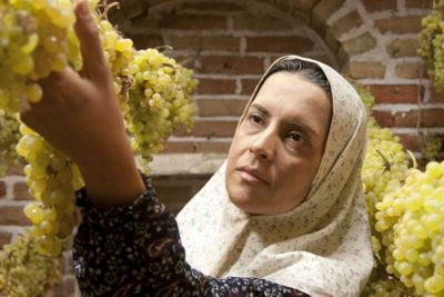 The Paternal House Gets Green Light for Iran Screening