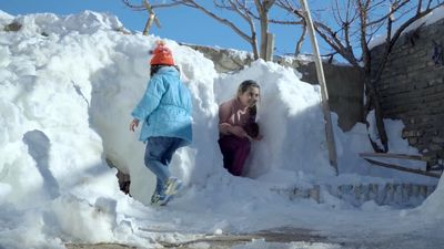 """""""The Snow Calls"""" crowned best at Big Sky Documentary Film Festival"""