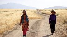 Movies from Iran to compete in Brazil It's All True festival