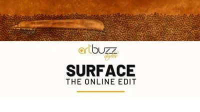 """Works by Iranian photographers on view at """"Surface artbuzz"""" exhibit"""